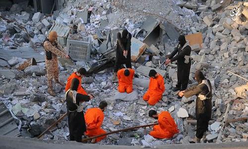IS tung video doa khung bo phuong Tay dam mau hon vu 11/9