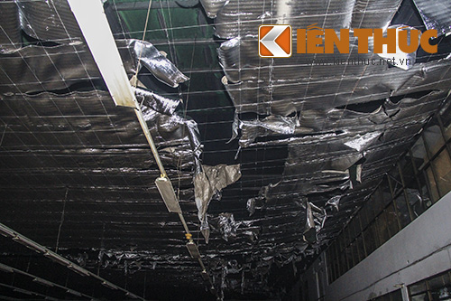 Chay cong ty may, hang tram thung vai bi thieu rui-Hinh-4