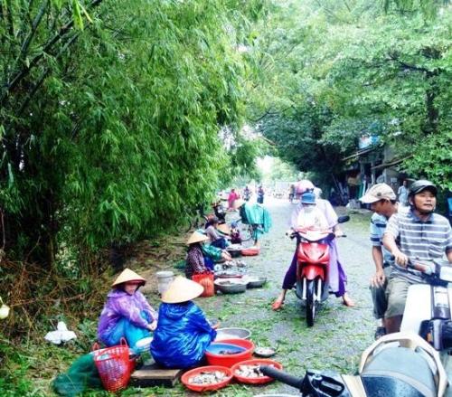 Ngu dan trang dem buong luoi muu sinh mac lu ve-Hinh-3