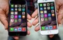 Những điều nên biết về iPhone 6s vào lúc này