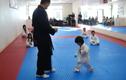 Võ sĩ Taekwondo nhí dễ thương không chịu nổi