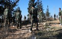 Quân đội Syria giành lại làng chiến lược tại Quneitra từ IS