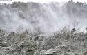 Đài Loan rét kỷ lục, dân đổ xô lên núi ngắm tuyết