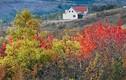 Cảnh sắc trời thu đẹp hút hồn ở Crimea