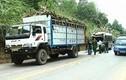 Thanh Hóa: Xe khách tông xe tải khiến 11 người bị thương
