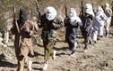 Chỉ huy cấp cao phiến quân Taliban bỏ mạng ở Afghanistan