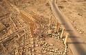 Nhìn lại loạt công trình cổ đại ở Syria bị IS phá hủy