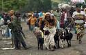 12 điều gây sốc về cuộc sống ở đất nước Công-gô