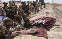 Ảnh: Dân quân Iraq chuẩn bị tấn công giải phóng Tal Afar
