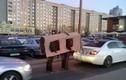 Khó đỡ loạt ảnh hài hước chỉ có ở nước Nga (14)