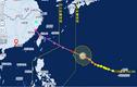 Sợ siêu bão Talim, Trung Quốc sơ tán nửa triệu dân