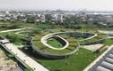 12 trường mẫu giáo đẹp nhất thế giới, Việt Nam đứng đầu