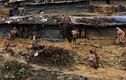 Khốn khổ cuộc sống của người tị nạn Rohingya ở Bangladesh