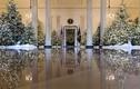 Nhà Trắng lộng lẫy mùa Giáng sinh đầu tiên của nhà ông Trump