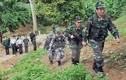 Họp Ủy ban liên hợp biên giới trên đất liền Việt Nam-Trung Quốc