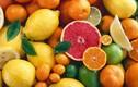 6 thực phẩm giúp tiêu mỡ thừa khẩn cấp trong ngày Tết