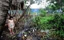 Ảnh: Cuộc sống đảo lộn khi ở cạnh bãi rác Đa Phước