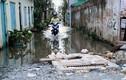 Ảnh: Hẻm thành ao, nhà mọc rêu do thi công đường ở Sài Gòn