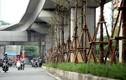 Chuyện lạ đời: Hà Nội trồng cây xanh dưới gầm đường sắt trên cao