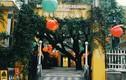 Du lịch Macau theo trải nghiệm tuyệt vời của chàng trai Việt