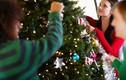 Khi nào nên thắp sáng cây thông mùa Noel?
