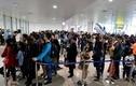 Sân bay Nội Bài chật cứng hành khách từ nước ngoài về ăn Tết