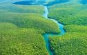"""""""Dựng tóc gáy"""" với loạt bí ẩn trong rừng già Amazon"""
