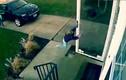 Tai nạn hi hữu: Em bé mở cửa bị gió cuốn bay