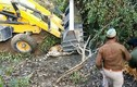"""Ấn Độ: Dùng máy xúc """"nghiền"""" chết một con hổ"""