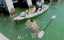 Cá nặng 250kg cắn câu, suýt làm lật thuyền cần thủ