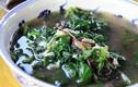 Loại rau quý hơn nhân sâm bị người Việt thờ ơ