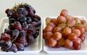 Các loại trái cây TQ tắm hóa chất, nhập nhèm xuất xứ