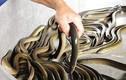 Khám phá cực thú vị về con lươn đặc sản Việt Nam
