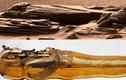 Bất ngờ vật thể bí ẩn như chiếc quách trên sao Hỏa