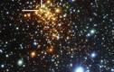 NASA phát hiện thêm cụm sao kỳ lạ Westerlund 1
