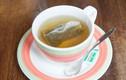 Thường xuyên uống trà xanh sẽ bị vô sinh?