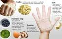 Đo khẩu phần dinh dưỡng chuẩn trong ngày bằng quy tắc nắm tay
