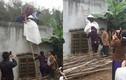 Kinh ngạc tục rước dâu kỳ lạ các vùng miền Việt Nam