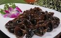 Bài thuốc từ mộc nhĩ đen chữa bệnh xuất huyết hiệu quả