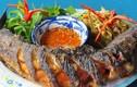 Cá trê mà nấu theo 3 cách này, ăn ngậy nhưng không bao giờ ngán