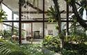 Nhà trong suốt tuyệt đẹp ẩn trong khu vườn xanh mướt