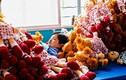 Hình ảnh sốc trong nhà máy thú bông khủng nhất Trung Quốc
