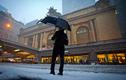 5 trận bão tuyết thảm khốc nhất trong lịch sử New York