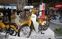 Cận cảnh xe máy Honda Super Cub 2018 mới