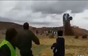 Kinh hoàng ô tô lộn vòng trên không trước khi bốc cháy