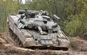 Mỹ xem xét việc cung cấp vũ khí cho Ukraine