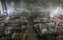 Khung cảnh hoang tàn sau thảm họa hạt nhân Chernobyl