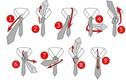 7 cách thắt cà vạt nhanh đẹp, vô cùng đơn giản