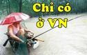 Các kiểu câu cá quá bá đạo chỉ có tại Việt Nam