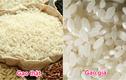 Mẹo hay giúp phân biệt gạo giả, gạo nhựa đơn giản